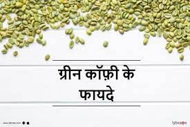 green coffee benefits in hindi ग र न क फ क फ यद