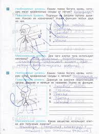 ГДЗ Проверочные и контрольные работы по окружающему миру класс  ГДЗ Проверочные и контрольные работы по окружающему миру 4 класс Вахрушев часть 1
