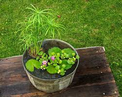 water basin to decorate your garden
