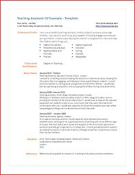 Teaching Assistant Description Resume Resume Online Builder