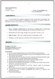 It Professional Resume Samples Free Download Download Professional Resume Template Simple Resume Format