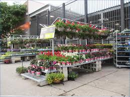 garden depot admirable my urban garden in the city of garden depot best creative inspiration home