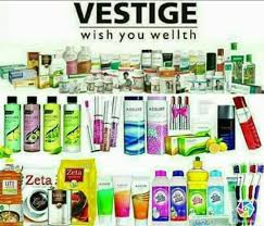Vestige Marketing Pvt Ltd, Laxmi Nagar - Placement Services (Candidate) in  Delhi - Justdial
