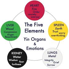 Chinese Medicine 5 Elements Chart About Acupuncture Suzanne Wheaton Acupuncture