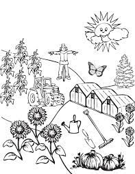 Bộ sưu tập tranh tô màu cánh đồng lúa cho bé thỏa sức tô màu | Trang tô màu,  Hình ảnh, Ánh trăng