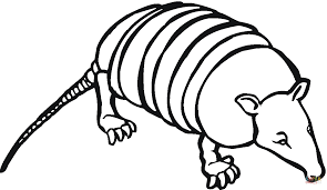 Small Picture Armadilo 5 coloring page Free Printable Coloring Pages