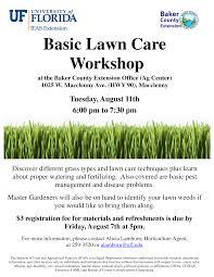 lawncare ad lawn care flyers