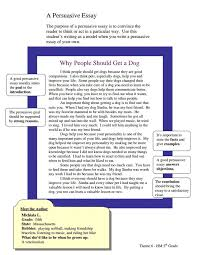 best persuasive essay images teaching writing grade 5 theme 6 a persuasive essay why people should get a dog