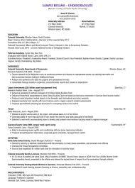 Undergraduate Sample Resume Letter Example