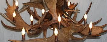 close up of large moose antler chandelier