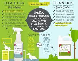 Natural Flea Tick Control That Works
