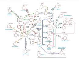 Aromatic Conversion Chart Pdf Organic Chemistry Conversion Chart Pdf Bedowntowndaytona Com