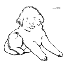 Dog Coloring Pages Bing Images