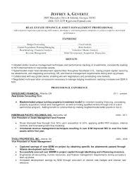 Affordable Resume Writing Services Inexpensive Resume Writing Services Best Ideas About Resume