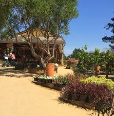 cottage gardens of petaluma