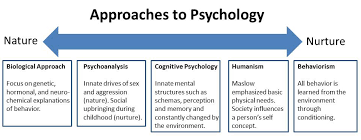nature nurture in psychology simply psychology nature nurture psychology