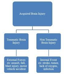 Brain Injury Facts Figures Brain Injury Alliance Of