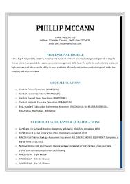 phil mccann resume 2014 1