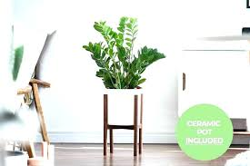 plant stands target stand order mid century modern with ceramic pot pots indoor cen tall planters outdoor plant