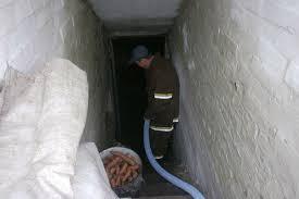 """Результат пошуку зображень за запитом """"рятувальники відкачали воду з підвалу"""""""