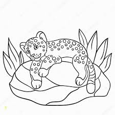 Cute Little Baby Animal Coloring Pages Coloring Pages Little Cute