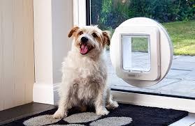 the sureflap microchip pet door for