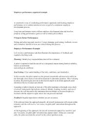 Performance Appraisal Format 6 Review Comments On Accountability