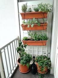 patio vegetable garden a vegetable garden on a small balcony hanging planters with herbs container vegetable
