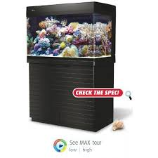 Led Lights For Red Sea Max 250 Red Sea Max 250 Reef Tank Saltwater Fish Tank Amazing Amazon