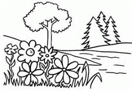 Small Picture Summer Flowers Coloring Page Nature Coloring Pages Flowers