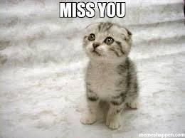 Miss you meme - Sad Cat (7300) | Memes Happen via Relatably.com