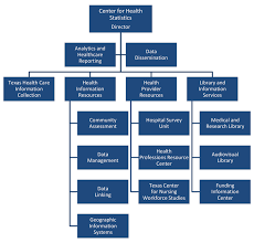 What Is The Purpose Of An Organizational Chart In Health