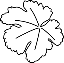 pumpkin drawing with leaves. pumpkin leaf clip art drawing with leaves i