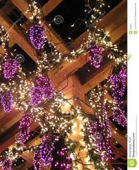 christmas lights outdoor trees warisan lighting. Grape Vine Lights Christmas Outdoor Trees Warisan Lighting G