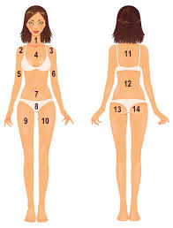Pimples On Body Chart What Is Your Body Acne Telling You