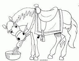 75 Paard Van Sinterklaas Tekenen Kleurplaat 2019