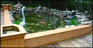 decor make your garden more cozy with above ground pond for