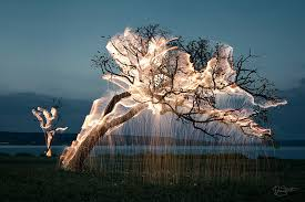 stunning lighting. Stunning-beautiful-tree-light-graffiti-doodles-long-exposure- Stunning Lighting