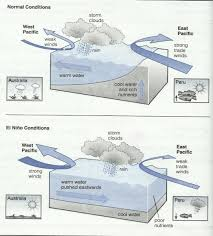 topic el nino is the of a warm ocean current that affects  essay topics topic el nino is the of a warm ocean current that affects weather patterns on both sides of the pacific ocean