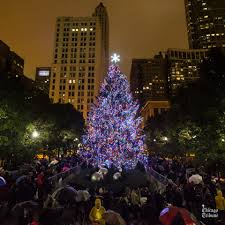 christmas tree lighting chicago. Image May Contain: Night, Christmas Tree, Sky And Outdoor Tree Lighting Chicago H
