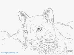 mountainn coloring page baby pages pictures free printable excellent mountain lion kids