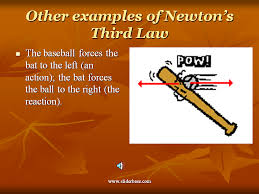 Laws Of Motion Examples Newtons 3rd Law In Nature Sliderbase