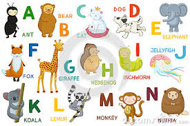 letters animals abc letter n cartoon characters alphabet isolated