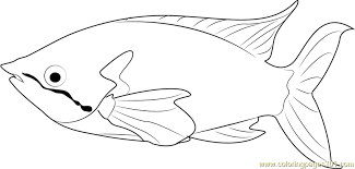 Small Picture Rainbow Fish Coloring Page Free Other Fish Coloring Pages