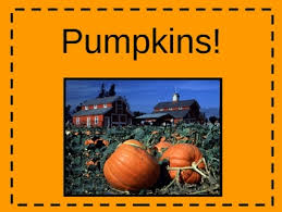 Pumpkin Information Powerpoint Kwl By Mrs Browning Tpt