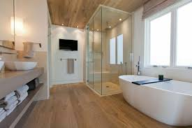 bathroom shower lighting. Bathroom Design Bathtub Shower Lighting Window
