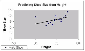 Shoe Size Compared To Height Chart Sariss Ravon