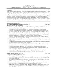 Event Manager Resume Examples Amazing Event Manager Resume Sketch Documentation Template Example 12