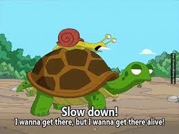 Animal memes - Slow down | FunnyMeme.com via Relatably.com