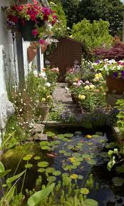 Container Garden Design